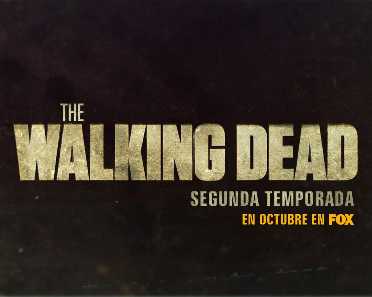 walking dead wallpaper