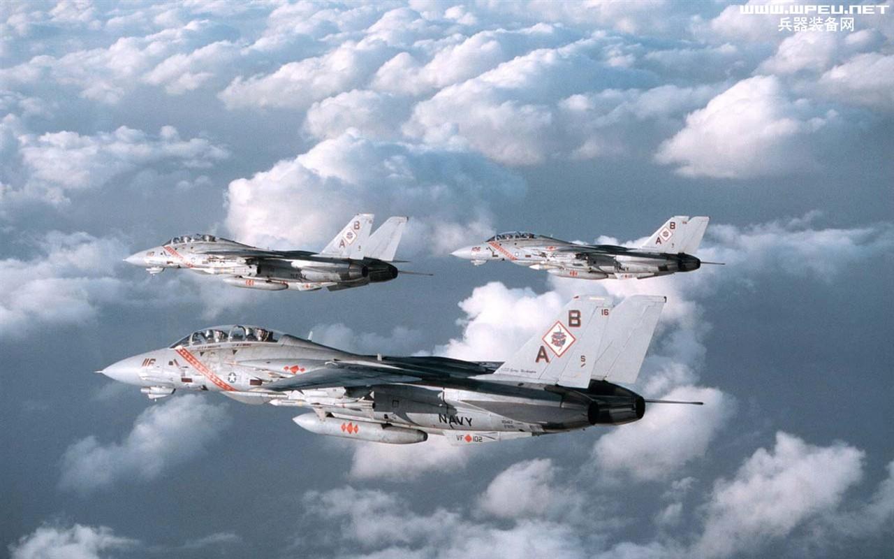 F 14 (戦闘機)の画像 p1_24