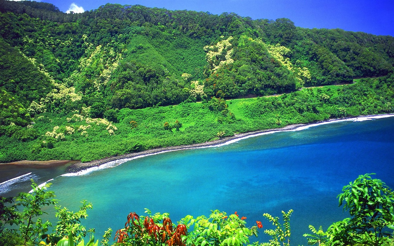 5660902588 in addition The Hill Trinidad Karin Kelshall Best as well Watch also Amazing Places Honeymoon Caribbean in addition Pic down 33926 1280 800. on trinidad and tobago houses