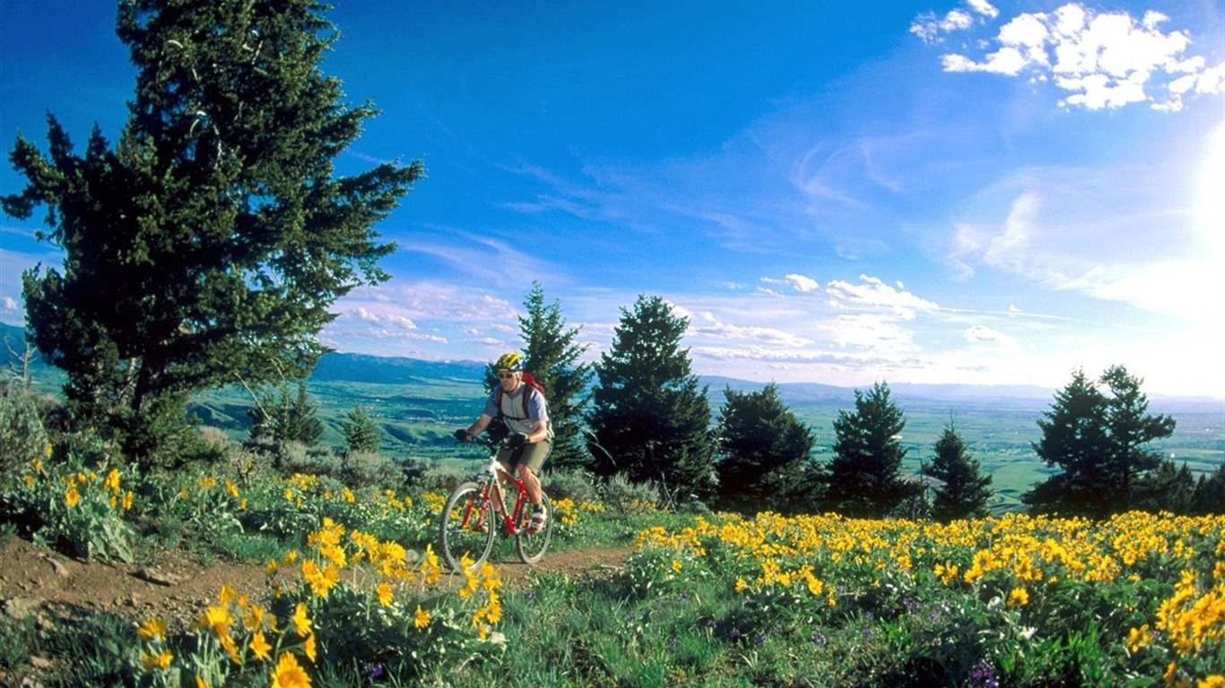 mountain bike wallpaper 1 1366x768 wallpaper download
