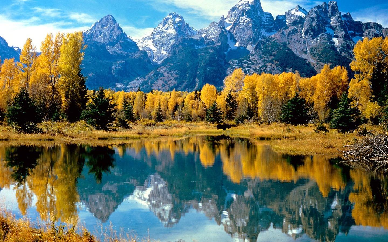 herbst wald und landschaft farbe natur gt herbst wald und landschaft ...