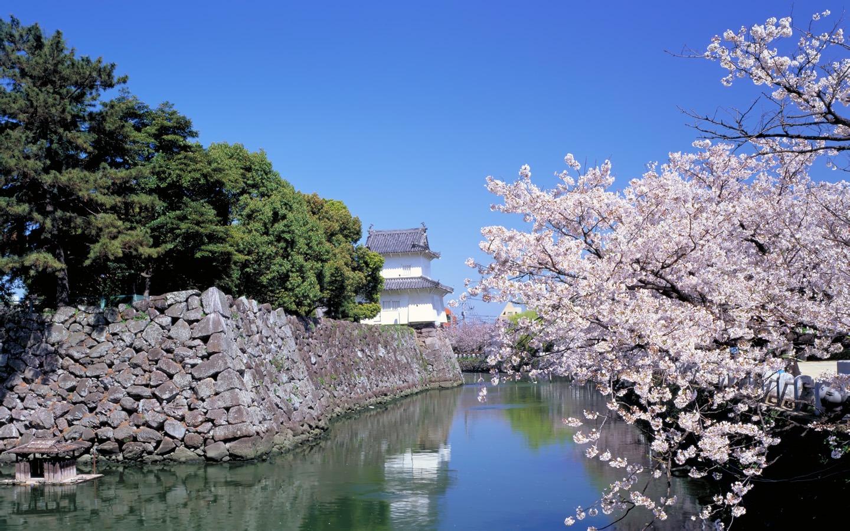 Fonds d 39 cran au paysage japonais 17 1440x900 fond d for Jardin japonais fond d ecran
