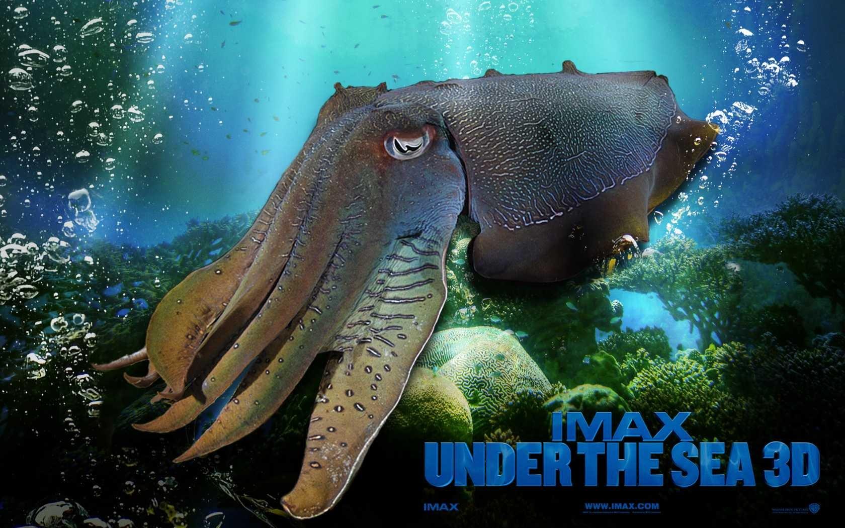 3d Wallpaper Hd 1680x1050: Under The Sea 3D HD Wallpaper #47