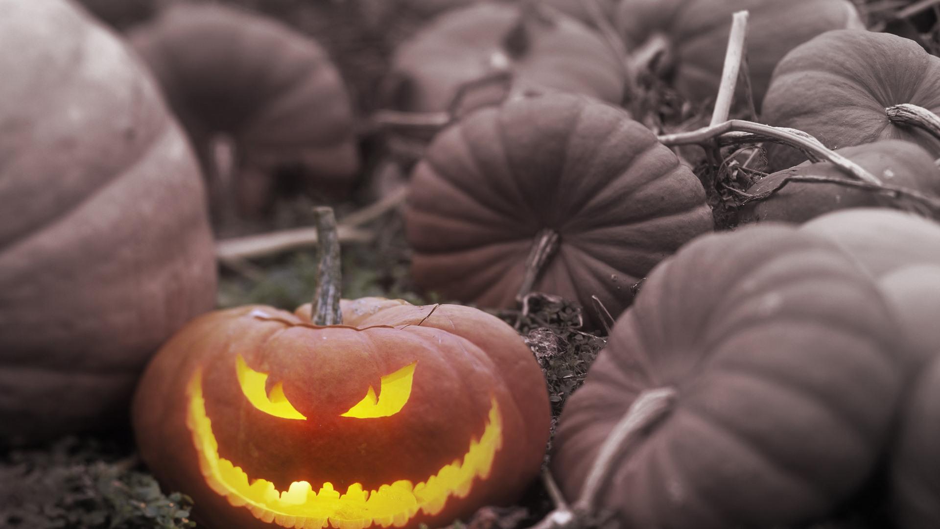 Хэллоуин  Скачать обои на рабочий стол в один клик!
