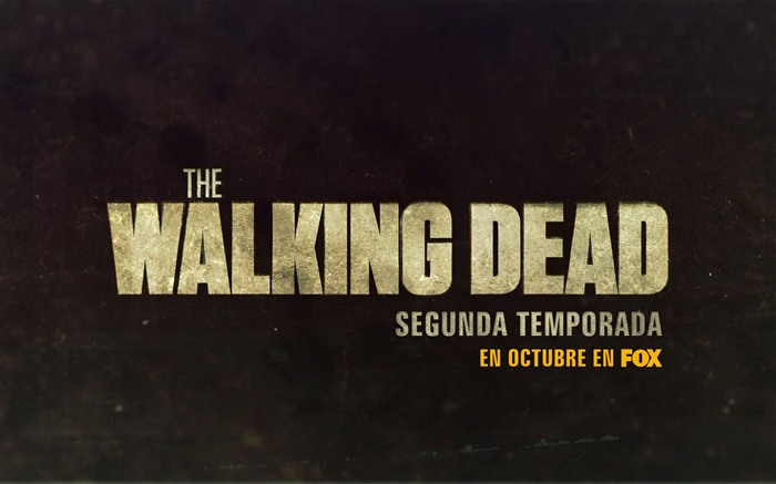 The Walking Dead HD wallpapers #19