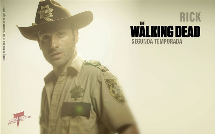 The Walking Dead HD wallpapers #23