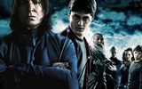 Harry Potter and the Half-Blood Prince wallpaper