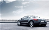 2010 Peugeot RCZ 308 Wallpaper #18