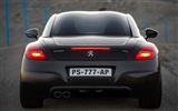 2010 Peugeot RCZ 308 Wallpaper #21