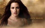 The Twilight Saga: New Moon Wallpaper Album (1)