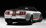 Ford Mustang GT500 Wallpapers #2