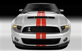 Ford Mustang GT500 Wallpapers #3