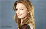 Emily VanCamp beautiful wallpaper