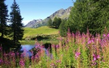 Alaska Landschaft Wallpaper (2)