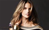 Alessandra Ambrosio beautiful wallpaper (2)