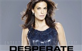 Desperate Housewives 绝望的主妇53