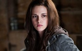 The Twilight Saga: Eclipse HD fond d'écran (1)