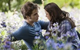 The Twilight Saga: Eclipse 暮光之城 3: 月食(二)10