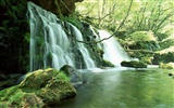 Waterfall-Streams Wallpaper (2)