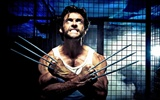 X-Men Origins: Wolverine 金刚狼