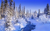 Snow widescreen wallpaper (1)