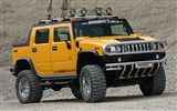 Hummer wallpaper album (6) #15