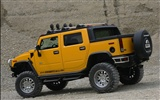 Hummer wallpaper album (6) #16