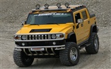 Hummer wallpaper album (6) #17