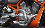 Harley-Davidson Wallpaper Album (3) #10