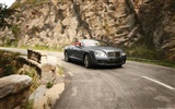Bentley Continental GTC Speed - 2010 賓利 #3