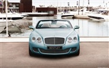 Bentley Continental GTC Speed - 2010 賓利 #8