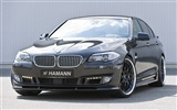 Hamann BMW 5-Serie F10 - 2010 HD Wallpaper