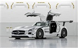 Mercedes-Benz SLS AMG GT3 - 2010 HD wallpaper