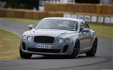 Bentley Continental Supersports - 2009 HD wallpaper #11