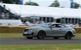 Bentley Continental Supersports - 2009 HD wallpaper #12
