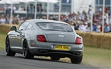 Bentley Continental Supersports - 2009 HD wallpaper #13