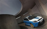 Ford Focus RS Le Mans Classic - 2010 HD обои #4