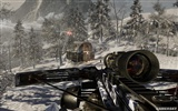Call of Duty: Black Ops HD wallpaper (2) #55