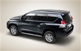 Toyota Land Cruiser Prado - 2009 丰田59