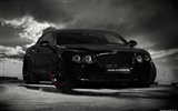 Wheelsandmore Bentley Continental Ultrasports 702 - 2010 HD обои #3