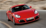 Porsche Cayman - 2009 HD wallpaper