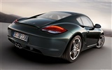 Porsche Cayman S - 2009 HD wallpaper #10
