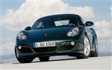 Porsche Cayman S - 2009 HD wallpaper #11