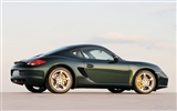 Porsche Cayman S - 2009 HD wallpaper #15