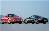 Porsche Cayman S - 2009 HD wallpaper #16
