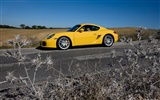 Porsche Cayman S - 2009 HD wallpaper #18