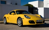 Porsche Cayman S - 2009 HD wallpaper