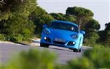 Porsche Cayman S - 2009 HD wallpaper #22