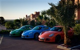 Porsche Cayman S - 2009 HD wallpaper #24