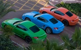 Porsche Cayman S - 2009 HD wallpaper #26